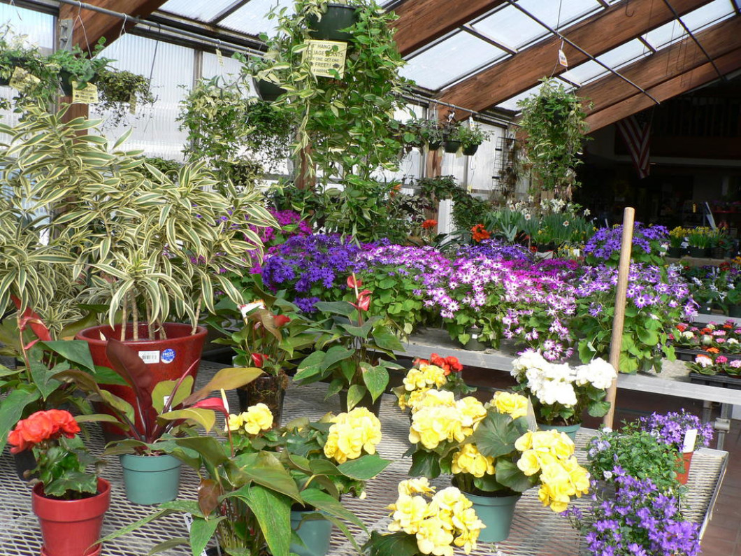 The maine flower show portland me for Portland spring home and garden show 2017